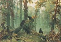 Утро в сосновом лесу. Эскиз картины 1889 г.