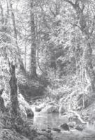 Лесной ручей. 1880.