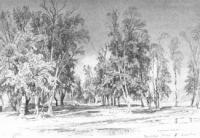 Зеленина роща. 1871