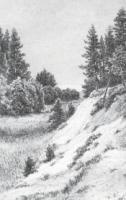 В Сестрорецке.1886.