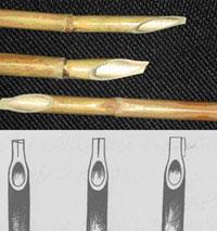 Тростниковое перо