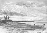 Берег моря. Мери-Хове. 1889
