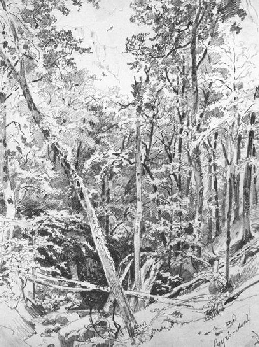 Сууч-хан. 1879.