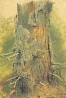 Кора на сухом стволе.Этюд.1889-1890