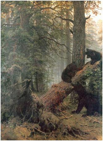 Утро в сосновом лесу/