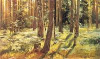 Папоротники в лесу. Сиверская. Этюд. 1883.