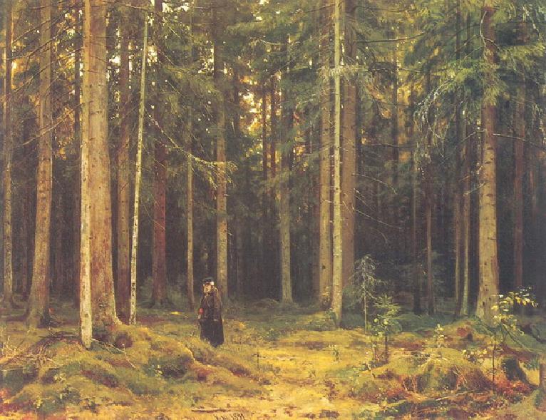 В лесу графини Мордвиновой.