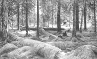 Лесное кладбище. 1893.