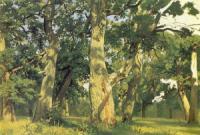 Дубы. Вечер. Этюд для картины 1887 Дубовая роща.