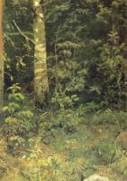 Береза и рябинки.Этюд.1878