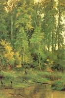 К осени.Этюд.1880