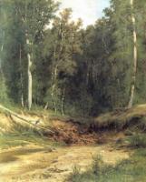 Лесной ручей.1874