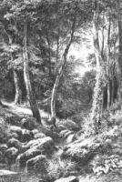 Ручей в лесу. 1870