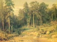 Сосновый бор.Мачтовый лес в Вятской губернии.1872