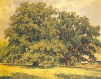 Мордвиновские дубы. 1891.