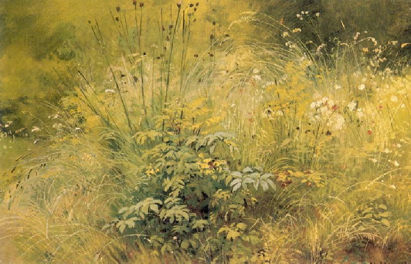 Травка. Этюд. 1892