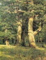 Дубовая роща. Левый фрагмент. 1887