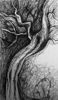Выразительный рисунок дерева