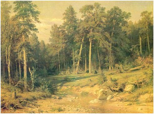 Лиственный лес на скалистом берегу.
