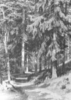 Дорожка в лесу.1891.