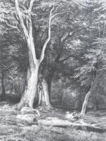 Отдых в лесу. 1865